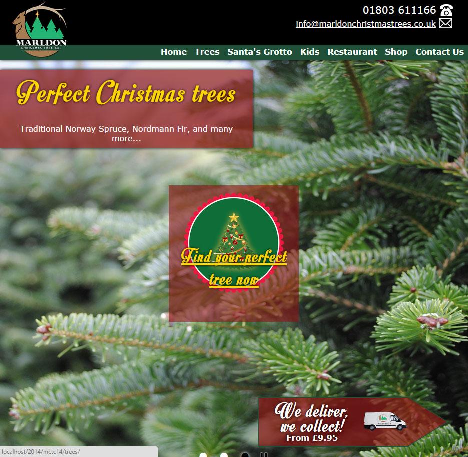Marldon Christmas Trees website 2014 - Nerdshack