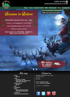 marldon christmas trees website 2014 front page