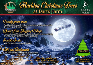 Marldon tree farm voucher front